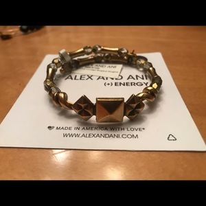 Alex and Ani Vintage 66 Bead